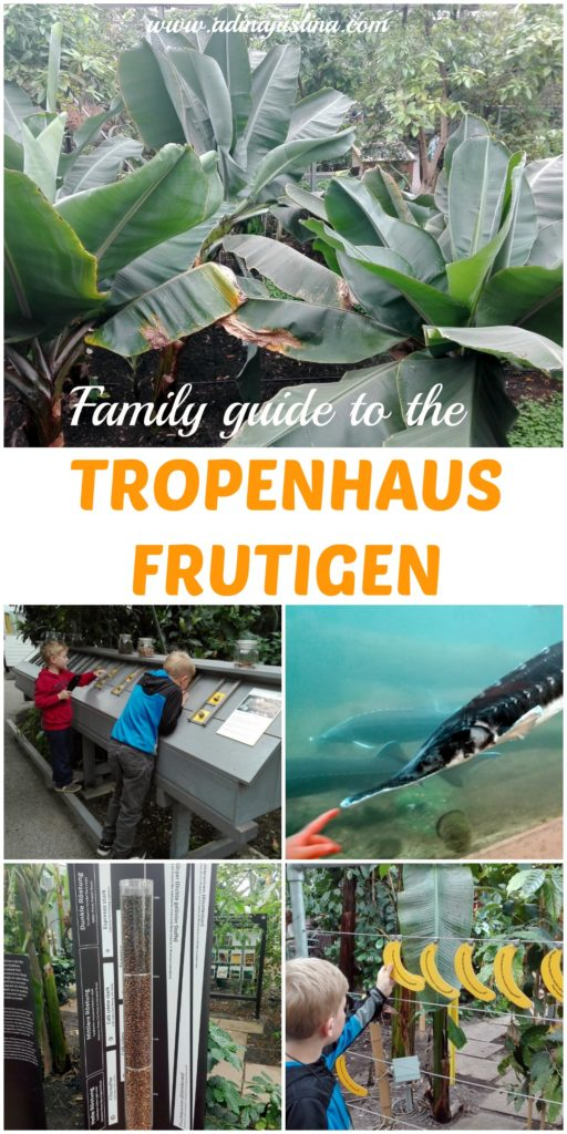 An ultimate family guide to the Tropenhaus in Frutigen, Switzerland.