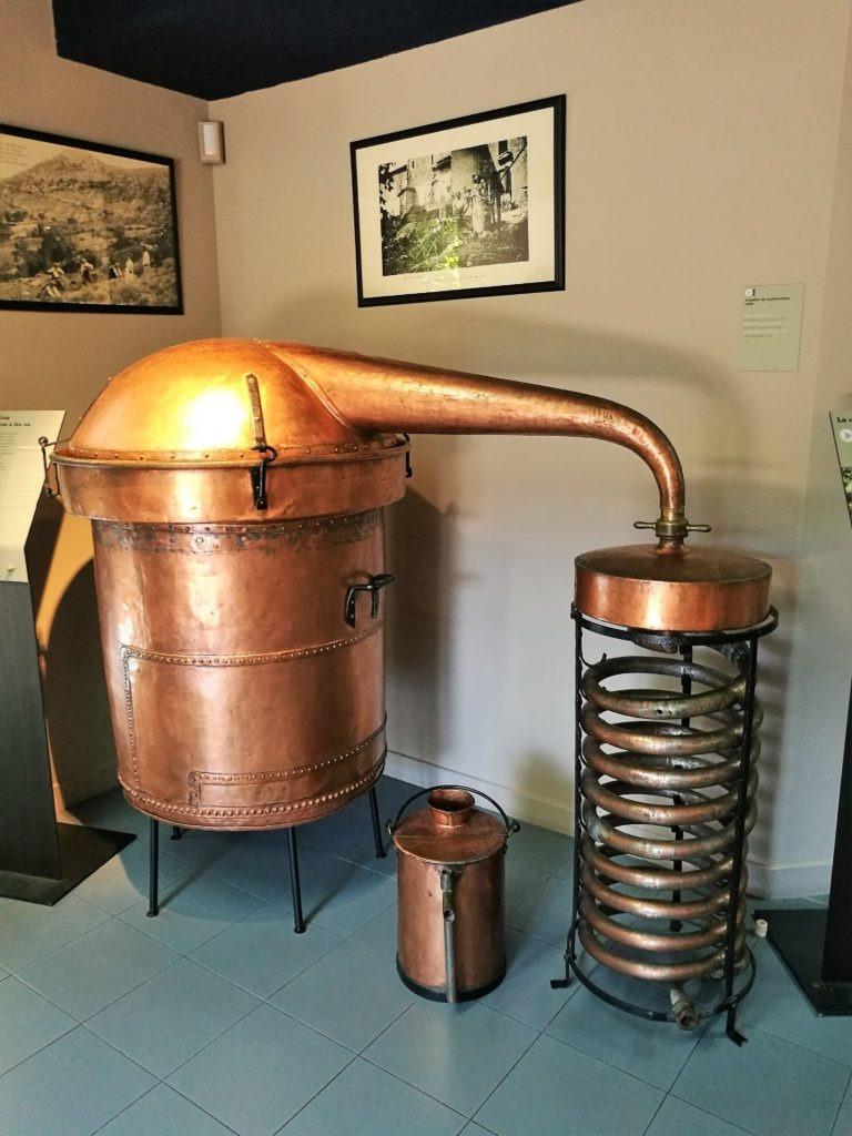 Musee de la lavande Coustellet