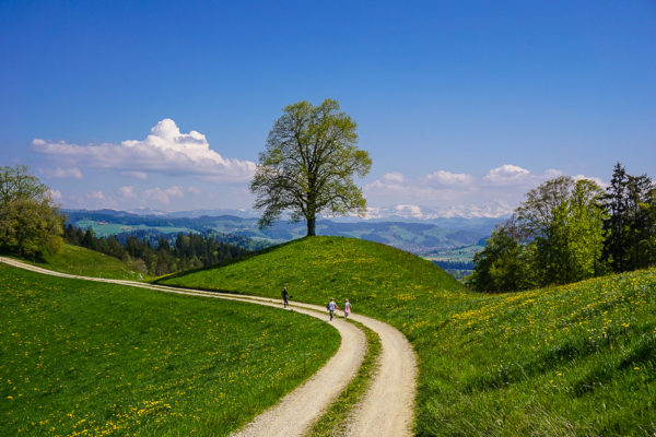 wandern im emmental hasle egg sumiswald
